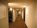 11階の廊下