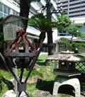 落ち着ける雰囲気の日本庭園