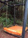 森のドッグラン ブランコ