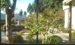 違う角度からの庭園