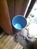 共同洗面台のゴミ箱