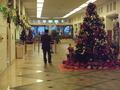 ホテルマハイナウエルネスリゾートオキナワの、クリスマスツリー