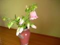 お花です。