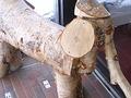 木の象さん