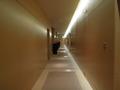 プールへ続く廊下