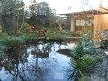 和食レストランの庭園2