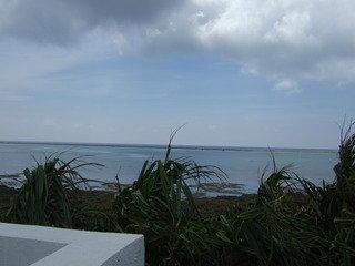 海は目の前!南国感たっぷりのリゾートコテージ。しかし設備が少し古め。