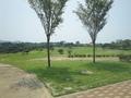広いパターゴルフ場