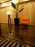 2階ロビーの観葉植物とおしゃれなオレンジ色のイス