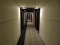 宿泊階の通路