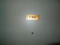 1667号室の扉