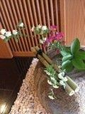 客室前のお花