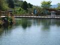 日本名水100選「霧島山麓丸池湧水」