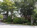 正面玄関前の庭