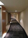 4階客室階の廊下