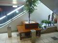 ホテル地下1階~1階へ上がるエスカレーターの脇(喫煙・休憩所)