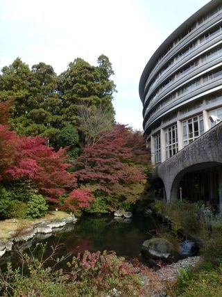 グランドプリンスホテル京都の紅葉もきれいでした