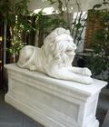 ライオンさんがお出迎え