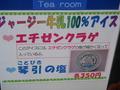 宿から10㎞ 車で23分程度 関電 魚っ知館