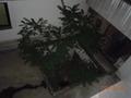 部屋の窓からの眺望(下)