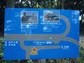 桂浜周辺 観光略地図