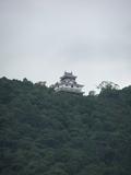 岩国城も見えます
