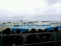 海洋博公園は広大なレジャースポット。
