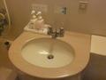洗面所が少し狭いです