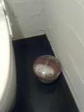 トイレのごみ入れ