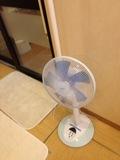 大浴場内扇風機