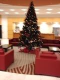 フロント近くにあったクリスマスツリー