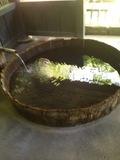 家族湯の浴槽