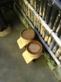 家族湯の桶