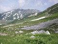 立山の眺望