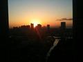 築地方面からの朝陽