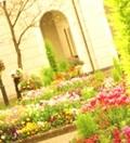 西洋ガーデン