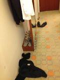 ホテル 床 写真です。
