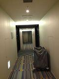 ホテル廊下写真です。