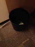 部屋 ゴミ箱 写真です。