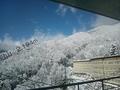 「プラザホール」からの眺め