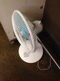 ロビーの扇風機