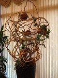 木のオブジェ