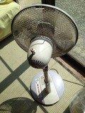 野天風呂扇風機