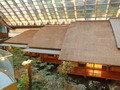 波風亭の屋根