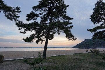 写真クチコミ:瀬戸内海の夕日が最高