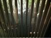 滝の湯、脱衣所から外の風景