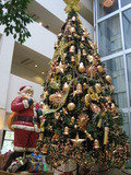 クリスマスシーズンのフロント前。