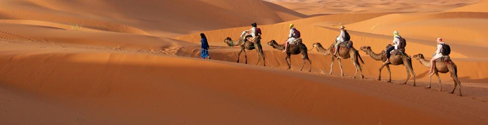 中東・アフリカ
